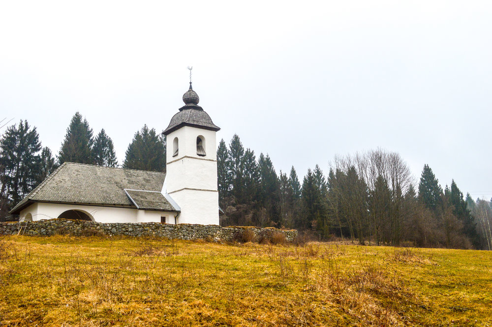 A white church on a hill next to a forest