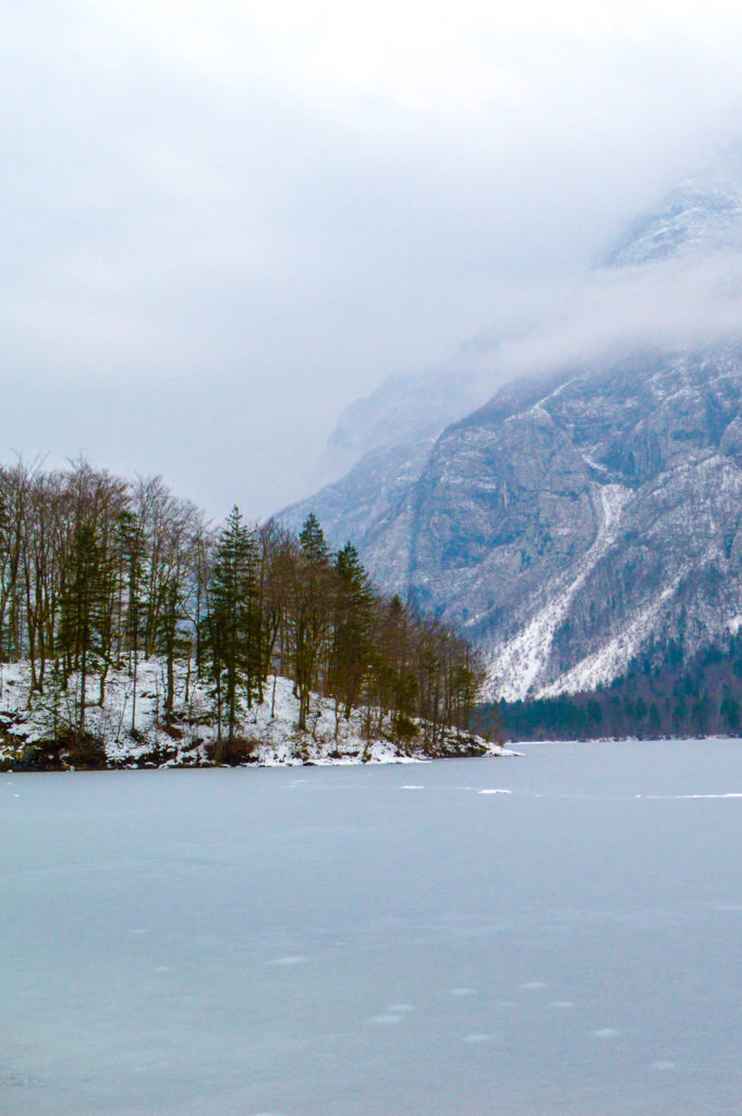 frozen lake with misty mountains and pine trees