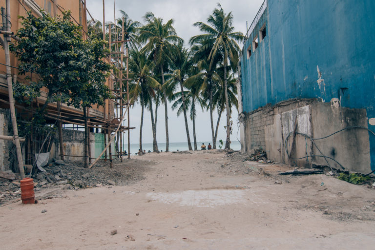 palm trees and run down houses on the beach