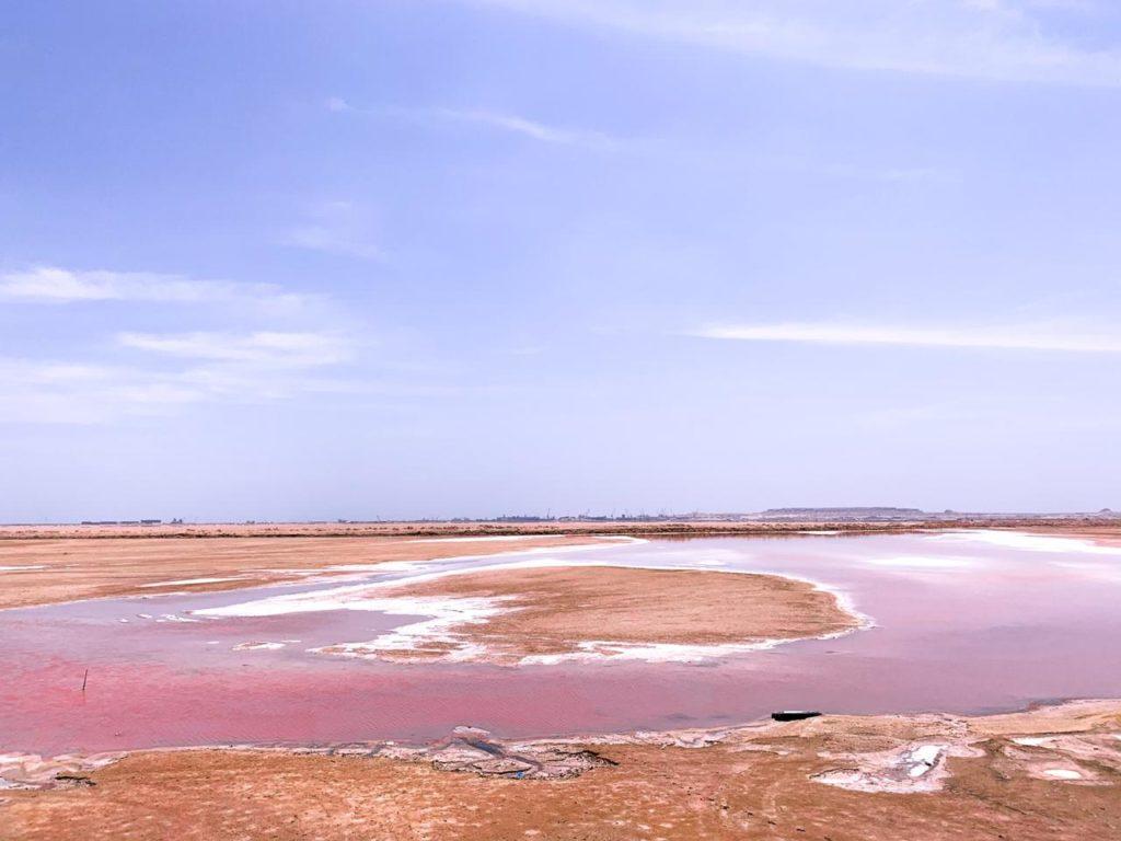 pink salt lake in desert