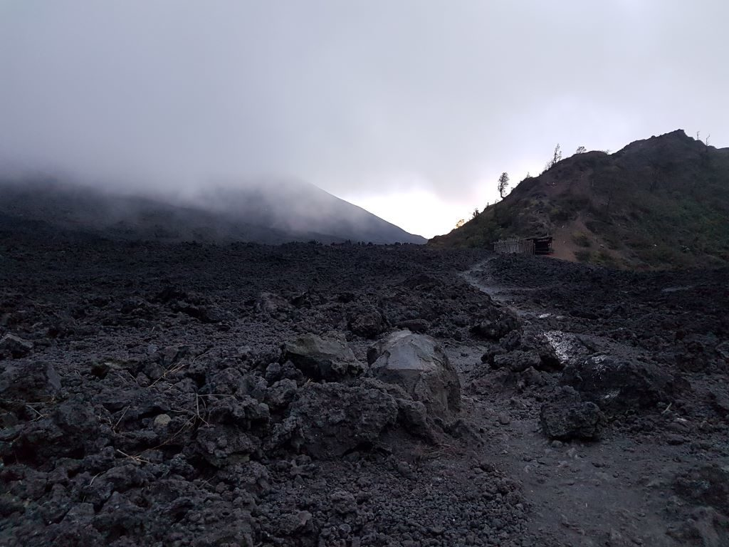 dried black lava scenery